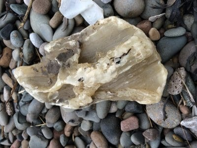 White wax on Cleveleys beach. Dog Walkers - Beware of Palm Oil on Beaches