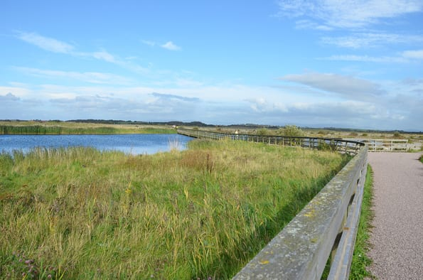 Fleetwood Marsh Nature Reserve, still on the Fylde Coast seafront as it turns into the estuary