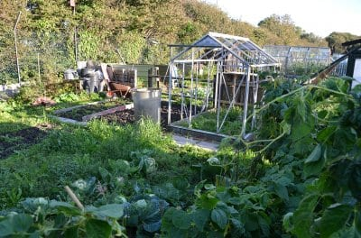 Fleetwood allotments