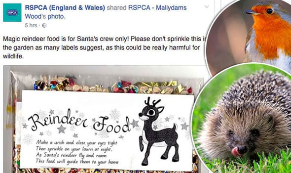 Please don't buy Reindeer food - Christmas cautions for animals and pets